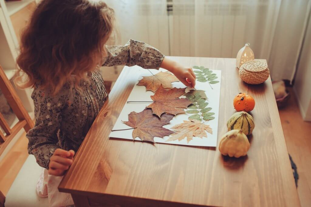 Autumn science activities for kids